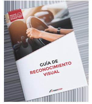 Guía de Reconocimiento Visual